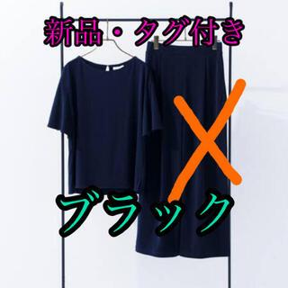 プラステ(PLST)のPLST(Tシャツ(半袖/袖なし))