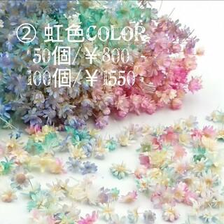 ② 『虹色COLOR』スターフラワーミニ☆花材(ドライフラワー)