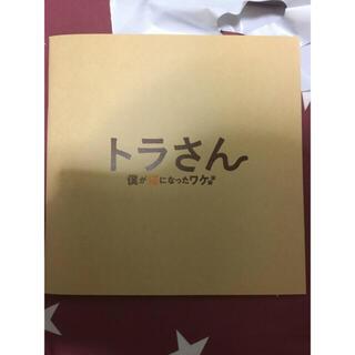 キスマイフットツー(Kis-My-Ft2)の映画 パンフレット トラさん僕が猫になったワケ 北山宏光 多部未華子(日本映画)