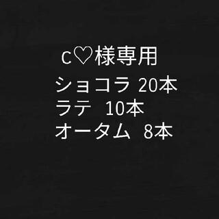c♡様専用シールエクステ(ロングストレート)