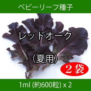 ベビーリーフ種子 B-03 レッドオーク(夏用) 1ml 約600粒 x 2袋(野菜)