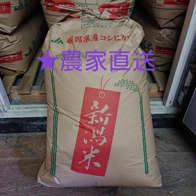 新潟県産コシヒカリ★玄米10kg★送料込み 食品/飲料/酒の食品(米/穀物)の商品写真