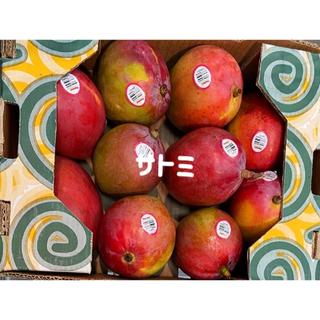 コストコ マンゴー 4kg 7~10個入り大玉