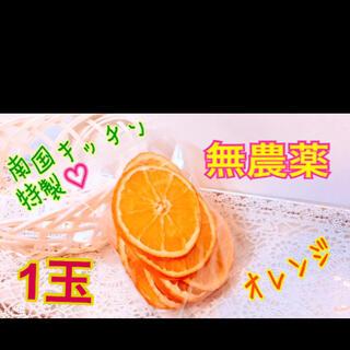 南国キッチン特製 乾燥オレンジ 小動物のおやつに♡(小動物)