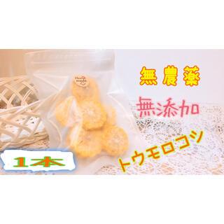南国キッチン特製 トウモロコシ 小動物のおやつに♡(小動物)