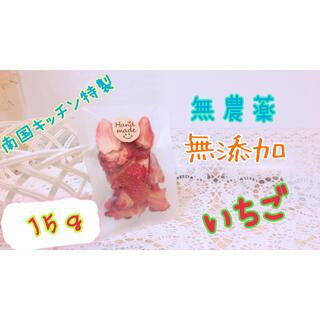 南国キッチン特製 ドライいちご 小動物のおやつに♡(小動物)