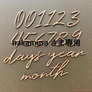 木製レターバナー 月齢フォトセットA / ニューボーン 100日祝 マンスリー
