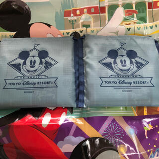 Disney - ディズニーリゾート エコバッグ 2個セット