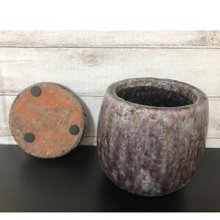 202 貫入 陶器 受け皿 セット プランター 植木鉢 和風 パープル(プランター)