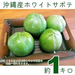 沖縄産ホワイトサポテ約1キロ┃サポーテはアテモヤよりも滑らかな食感!(フルーツ)