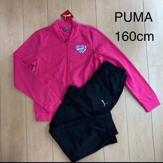 プーマ(PUMA)の【PUMA】 ジュニア ジャージ上下セット 160cm(その他)
