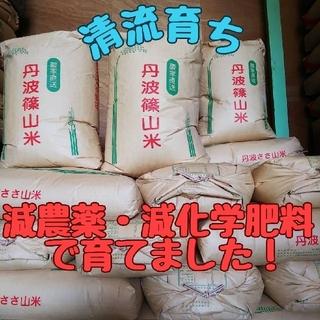 清流育ち 兵庫県丹波篠山米 玄米10kg(減農薬,減化学肥料栽培)