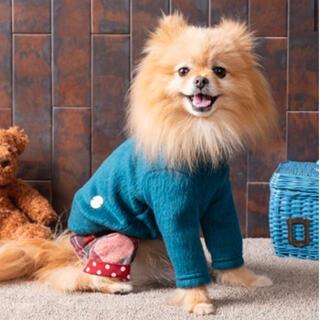 アズノウアズ(AS KNOW AS)のアズノウアズデワン  NビーバーフワモフTT お着替えシリーズ(犬)