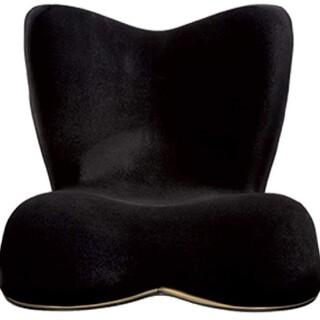 スタイル プレミアム デラックス Style PREMIUM DX (座椅子)