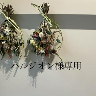 ハルジオン様専用(シャツ/ブラウス(半袖/袖なし))
