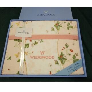 WEDGWOOD - ウェッジウッド タオルケット ワイルドストロベリー ピンク