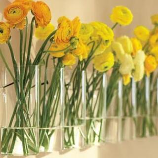 テラリウム ガラス花瓶