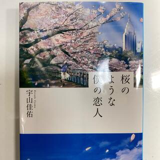 シュウエイシャ(集英社)の桜のような僕の恋人(文学/小説)