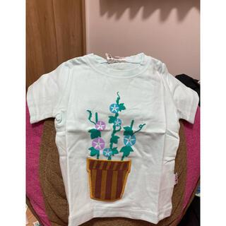 新品激安コーディーコービー半袖Tシャツ朝顔男の子女の子蚊カット保育園春夏抗菌