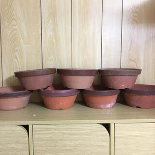 B 素焼き 鉢植え 植木鉢 盆栽鉢 山野草鉢 テコラッタ まとめ売り(プランター)