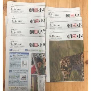 アサヒシンブンシュッパン(朝日新聞出版)の朝日小学生新聞6/7(月)〜6/13(日)7日分(印刷物)