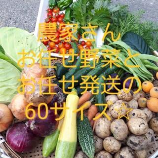お野菜詰め合わせ60サイズお楽しみセット☆(野菜)