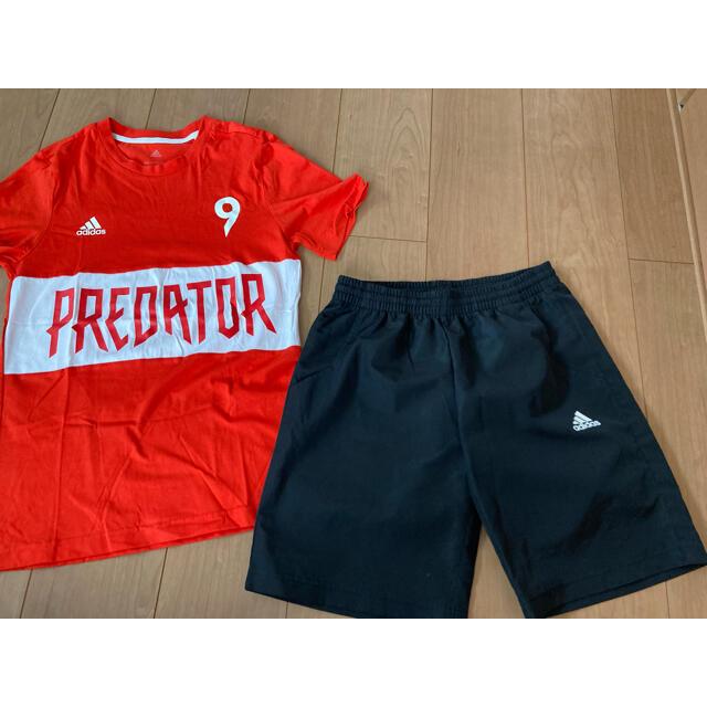 adidas(アディダス)のadidas アディダス プレデター 160サイズ Tシャツ ハーフパンツセット キッズ/ベビー/マタニティのキッズ服男の子用(90cm~)(Tシャツ/カットソー)の商品写真