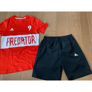 adidas - adidas アディダス プレデター 160サイズ Tシャツ ハーフパンツセット