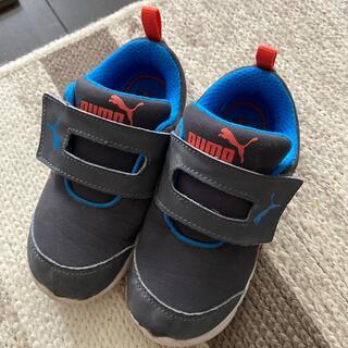 プーマ(PUMA)のPUMA 16㎝ 靴(スニーカー)