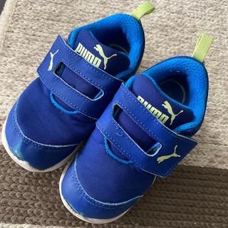プーマ(PUMA)のPUMA 15㎝ 靴(スニーカー)