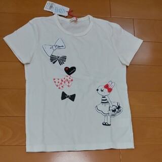 ニットプランナー(KP)のKP 140 ミミ(Tシャツ/カットソー)