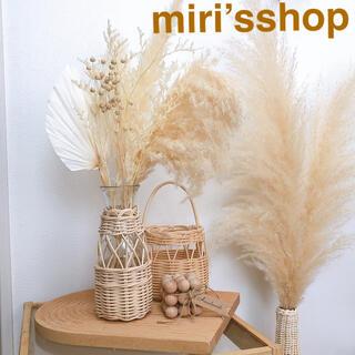 パンパスグラスとホワイトヤシの葉セット 限定品(ドライフラワー)