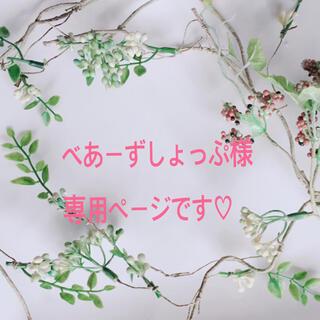 べあーずしょっぷ様専用(コサージュ/ブローチ)