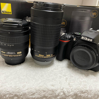 Nikon - 【詳細必読】Nikon D5600本体 レンズ2本セット