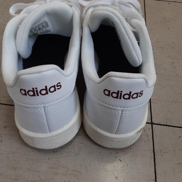 adidas(アディダス)のくつ(Adidas)24cm レディースの靴/シューズ(スニーカー)の商品写真