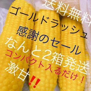 農家直送‼️甘いゴールドラッシュコンパクト入るだけ2箱‼️(野菜)
