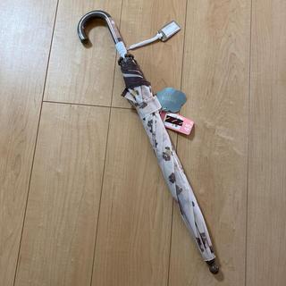 フタフタ(futafuta)のバースデイ フタくま 傘 45㎝(傘)