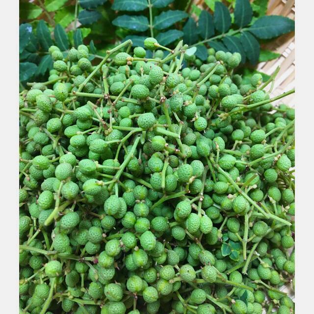 山椒の実 天然 200g 食品/飲料/酒の食品(野菜)の商品写真