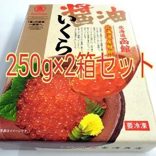 期間限定! 北海道産 いくら醤油漬 250g×2箱セット(魚介)