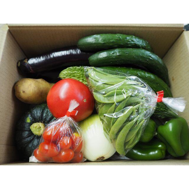 農家直売 野菜詰合せ 80サイズ 送料込み 熊本産 食品/飲料/酒の食品(野菜)の商品写真