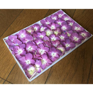 B① 銀の紫陽花が作った葡萄色の紫陽花ドライフラワー