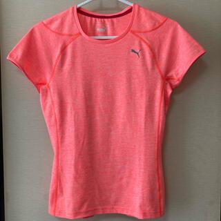 プーマ(PUMA)のPUMA・Tシャツ レディースM(ウェア)