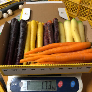 彩りフルーツにんじん 先行販売 訳あり B品 1.7kg以上。無農薬 野菜