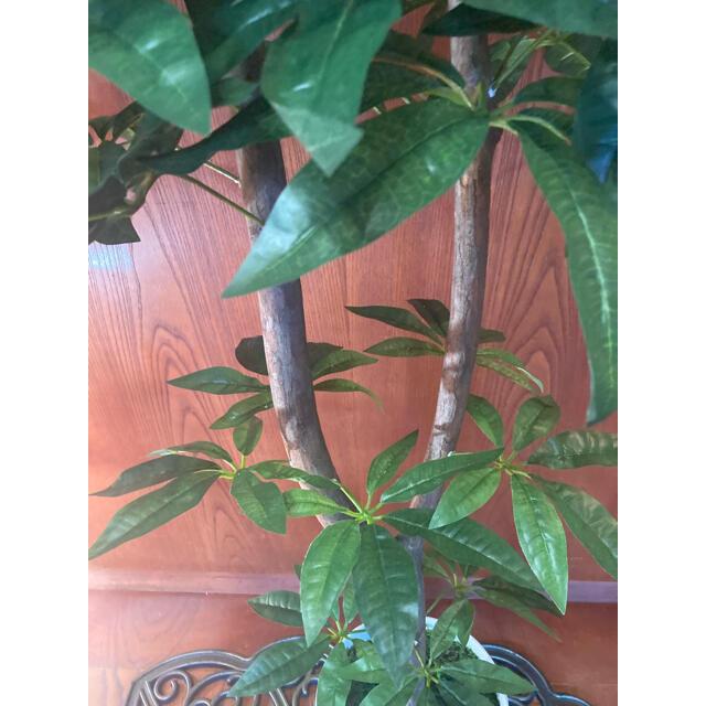 光触媒 人工観葉植物 ウォールグリーン 造花 インテリア パキラ128 インテリア/住まい/日用品のインテリア小物(置物)の商品写真
