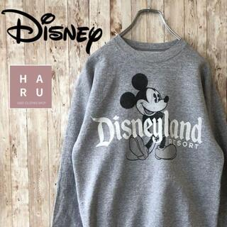 ディズニー(Disney)のレア☆ミッキー ディズニーランドリゾート トレーナー(スウェット)