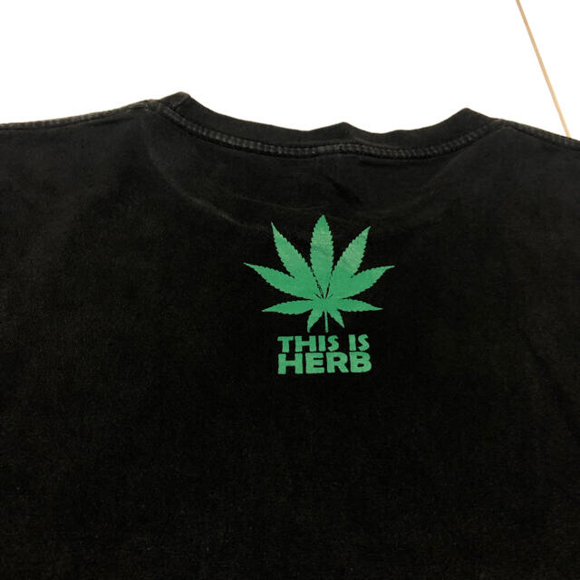 Hanes(ヘインズ)のHanes This is Herb Tshirt メンズのトップス(Tシャツ/カットソー(半袖/袖なし))の商品写真