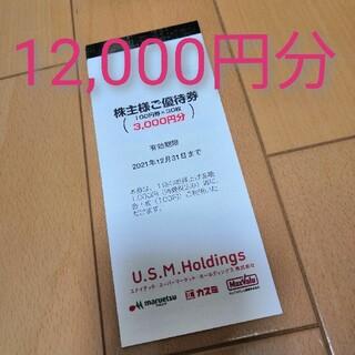 イオン(AEON)のUSMH 株主優待券 12000円分(ショッピング)