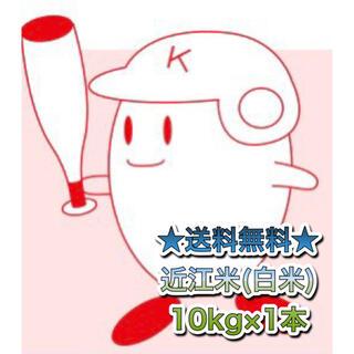 【送料無料】近江のお米 10kg(10kg×1本)(米/穀物)