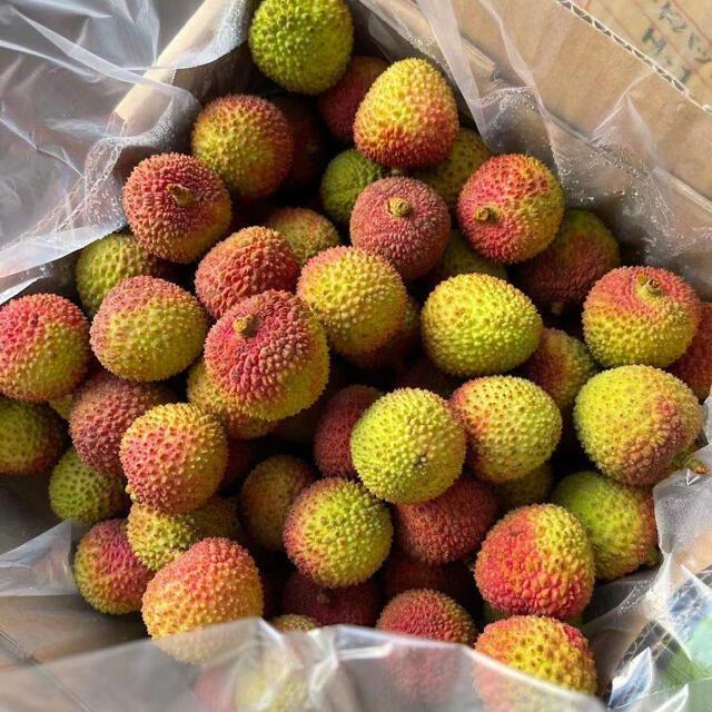ライチ 生ライチ 妃子笑 2kg クール便込み  食品/飲料/酒の食品(フルーツ)の商品写真