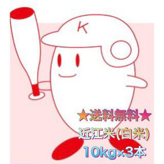 【送料無料】近江のお米 30kg(10kg×3本)(米/穀物)